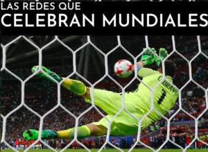 redes Técnicas El León de Oro fabricadas por Tecnología Deportiva para fútbol, pádel o deportes de equipo