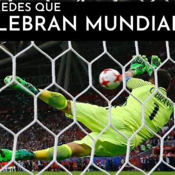 El León de Oro gana notoriedad en el deporte internacional