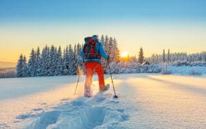 análisis del mercado de deportes de invierno y montaña