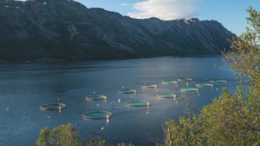 Patagonia acentúa su compromiso medioambiental con el estreno de un documental