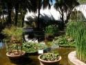 El Jardín Botánico de la Universidad de Valencia acogerá el colofón de las jornadas de compra de Atmósfera Sport