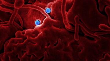 El coronavirus pone en jaque Juegos Olímpicos y Eurocopa de fútbol